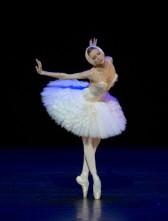 Svetlana Zakharova & Stelle del Teatro Bol'šoj di Mosca e del Teatro Mariinskij di San Pietroburgo. Russian Code al Ravello Festival