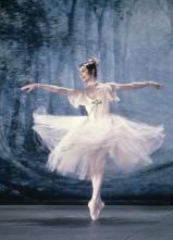 Il Teatro San Carlo festeggia Carla Fracci La Musa della danza, Auguri Carla!