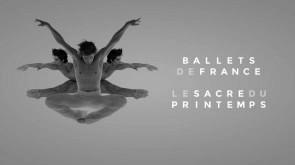 Mario Piazza firma una sua versione della Sagra della Primavera per il Ballets de France