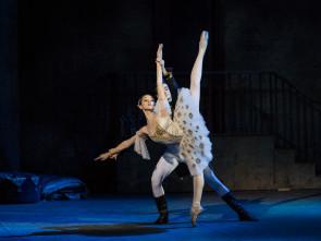 Bandi per l'ammissione alla Scuola di danza del Teatro dell'Opera di Roma diretta da Laura Comi, anno 2017-2018.