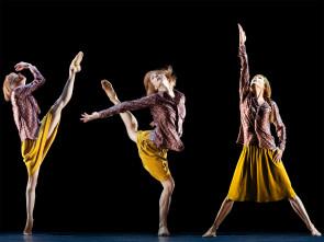 A Scenario Pubblico The Risico Screening, Rassegna multischermo della danza in video