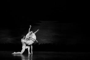 Accolto con calore Il Lago dei cigni del Balletto di Maribor al Teatro Municipale di Piacenza
