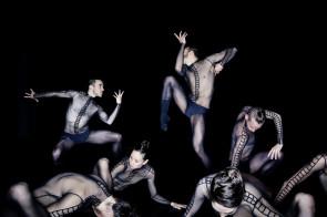 Il corpo che danza: il Gesto. Incontri al Teatro Morlacchi di Perugia.