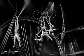 La compagnia Sonics al Teatro Puccini di Firenze con lo show Toren