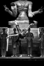 Il Teatro dell'Opera di Bucarest cerca una ballerina prima solista. Audizioni private (Romania)