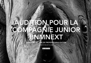 Audizione Junior Company BNMNext, compagnia junior del Ballet National de Marseille diretto da Emio Greco i Pieter C. Scholten