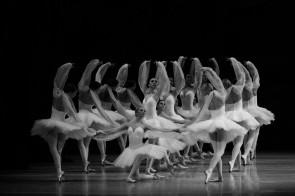 La Bayadère o il trionfo di Marius Petipa. Conferenza a La Fenice di Venezia