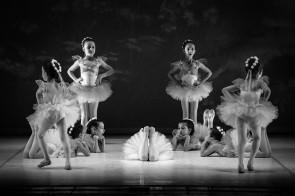 I saggi di danza