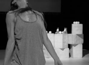Cigno di e con Loredana Parrella e Questo lavoro sull'arancia di Marco Chenevier al Festival Teatri di Vetro