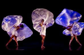I Momix al Teatro Petruzzelli di Bari