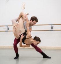 I coreografi, i ballerini e noi: Don Chisciotte.