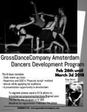 GrossDanceCompany Amsterdam. Dancers Development Program