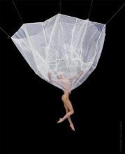 No Gravity Dance Company in Dall'Inferno al Paradiso di Emiliano Pellisari a Pavia