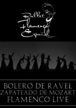 Juanma Carrillo, Luis Ortega e la Compagnia Ballet Flameco Espanol in tour da Torino a Bari