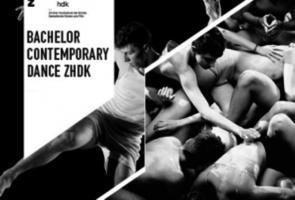 Audizione BA in Contemporary Dance della Zurich University of the Arts