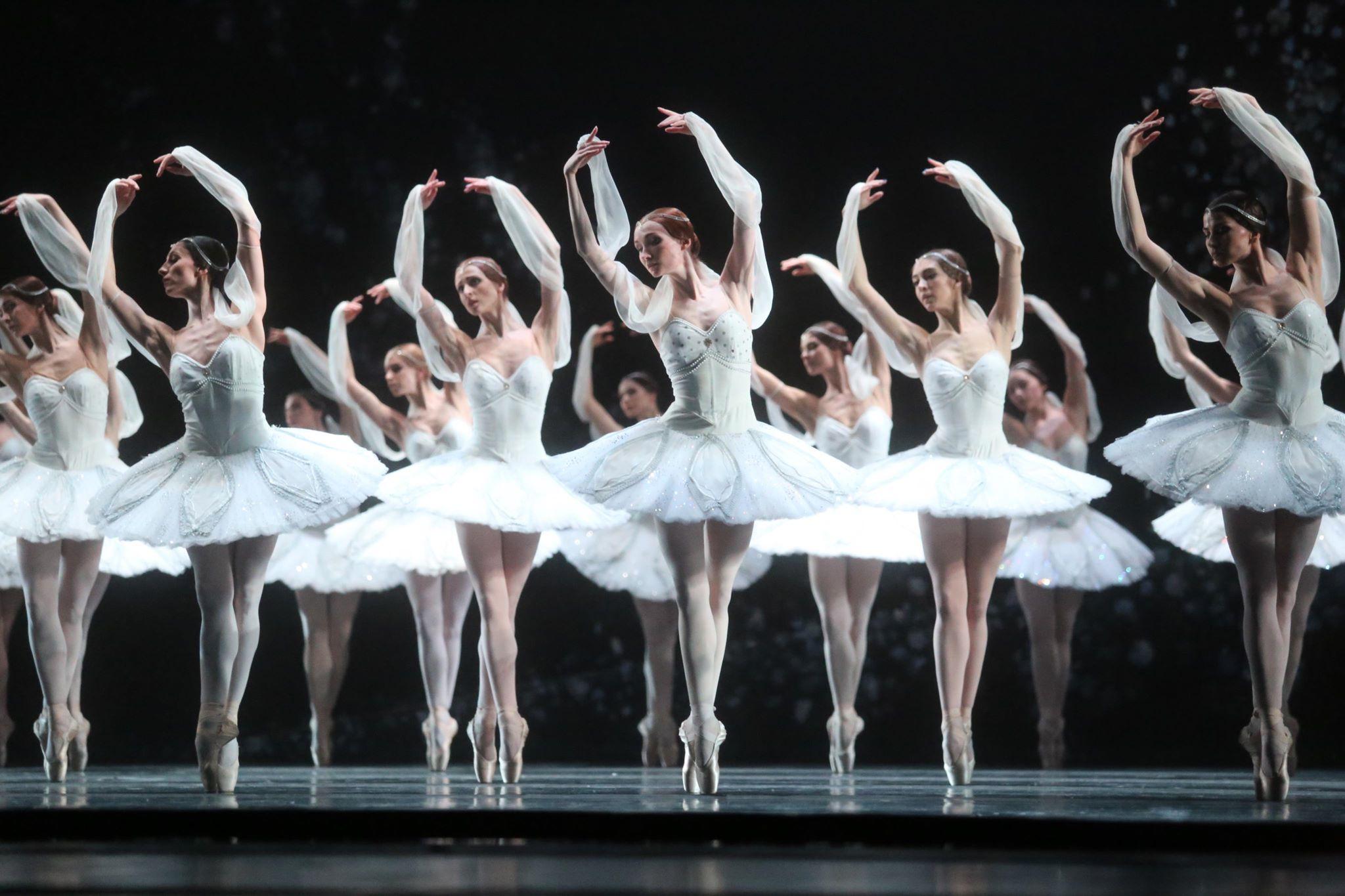 Disegno Di Una Ballerina Classica : Disegno di una ballerina classica libro scultura con il disegno