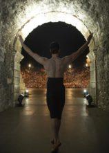 Roberto Bolle e i suoi Friends incantano l'Arena di Verona