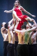 Audizione Kamea Dance Company ad Amsterdam. La compagnia israeliana diretta da Tamir Ginz cerca danzatori e danzatrici per le stagione 2019-2021
