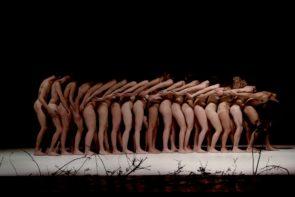 Origini - Incontri di ricerca sul movimento aperti a danzatori, amatori e non professionisti a cura di Luna Cenere. Open Call