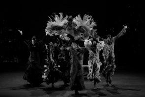 Milano Flamenco Festival 2019. Manuel Liñán & Friends, Compagnia Maria Moreno e Compagnia Patricia Guerrero al Piccolo Teatro Strehler