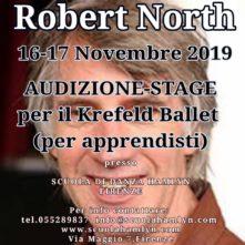Audizione stage con Robert North per il Krefeld Ballet
