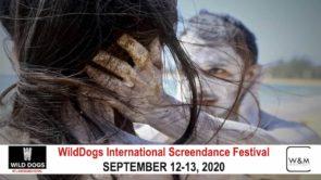 WildDogs International Screendance Festival. Open Call